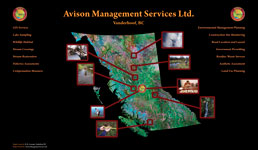 Avison Management Services Link